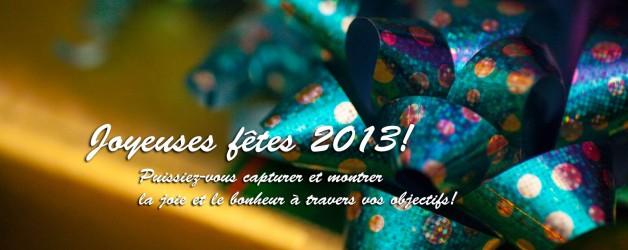 Joyeuses fêtes 2013!
